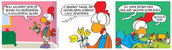 s20160426-karikatur-citcit-babisko-cicek-lale-sari-kirmizi-renk-boya-hediye-salon
