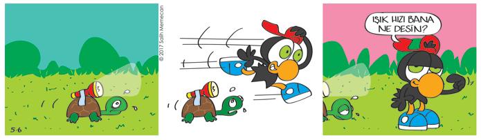 s20170506-karikatur-Zeytin-kaplumbaga-isik-hizi-yaris-hayvan-bahce