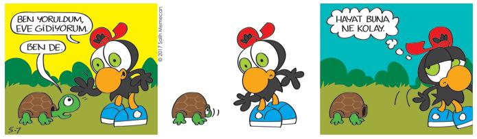 s20170507-karikatur-Zeytin-kaplumbaga-hayvan-ev-bahce