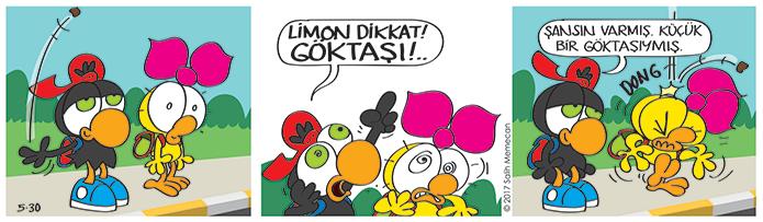 s20170530-karikatur-Limon-Zeytin-goktasi-saka-yaramazlik-bahce