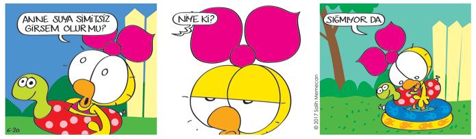 s20170620-karikatur-Limon-Citcit-yaz-havuz-can-simidi-tedbir