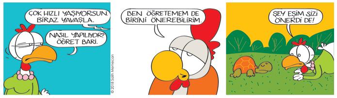 s20180312_karikatur_Citcit_Babisko_ogretmen_hiz_yavas_hayvan_kaplumbaga_es_salon-bahce